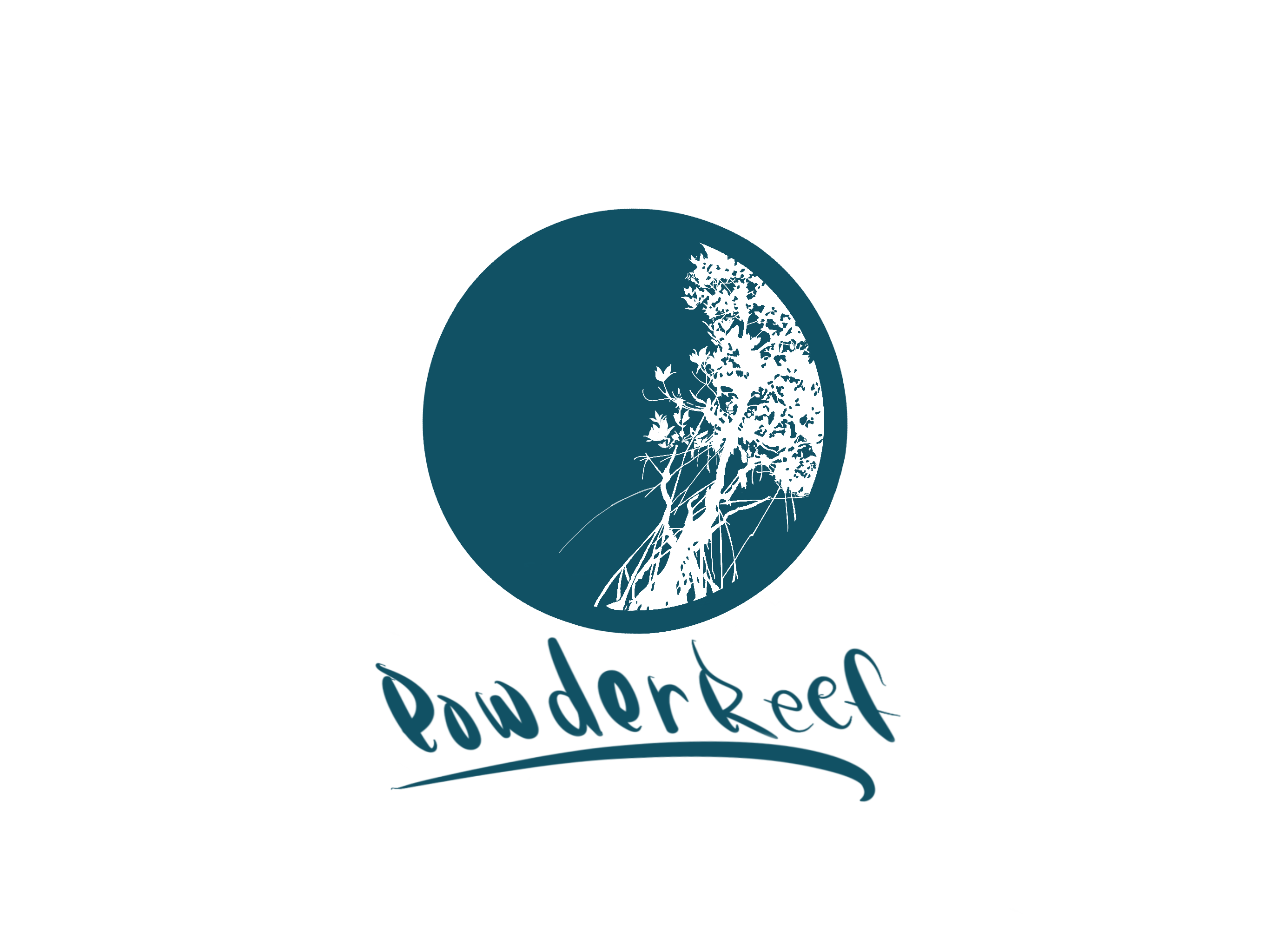 西表島Powder Reef